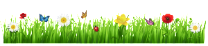 Spring_Grass_with_Flowers_PNG_Clipart_Picture