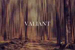 Sign saying VALIANT