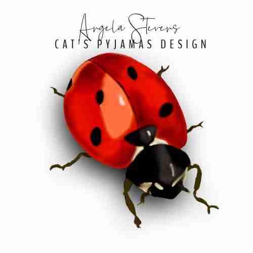 Ladybug Angela Stevens